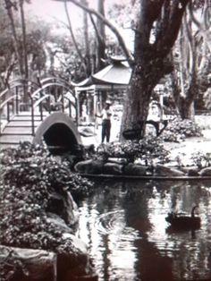 Parque Morazan SJ. CR 1950