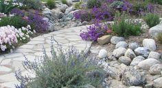 fleur verveine, fleurs blanches, pierre naturelle et allée en pierre naturelle