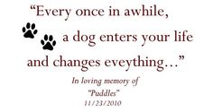 Dog Memorial Quotes images