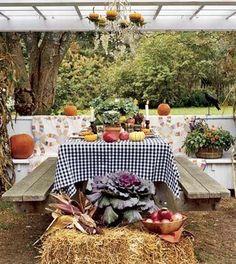 gingham picnic