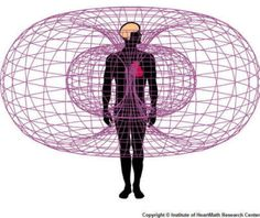 Energy fields of the body