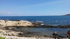 Il mare di brucoli