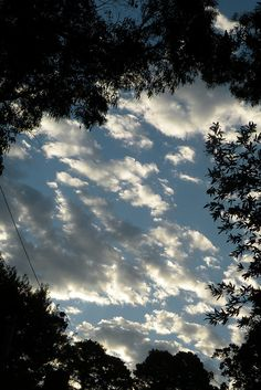 Clouds in Mill Valley, CA