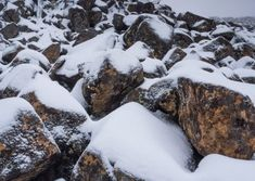 Alpine Loop walking tour on kunanyi / Mt Wellington Hobart Tasmania is a photographers dream Alpine Loop, Ice Houses, Hiking Tours, Tasmania, Walking Tour, Bouldering, Landscape Photography, Photographers