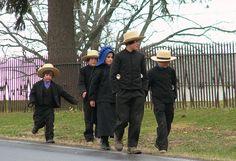 Amish Children  Family of Amish children walking home.