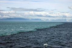 Enroque de ciencia: Aguas que se juntan  ¡Pero no se mezclan! Ése podría ser el pie de foto de la impresionante imagen.  Una instantánea tomada en el golfo de Alaska y correspondiente al encuentro de dos masas de agua de las que destacan dos obviedades. Una, tienen diferente color, algo que salta a la vista; y dos, no llegan a mezclarse, es clara la línea que forma la espuma en la intersección de ambas. Entre dos aguas.