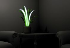 Plamp = Plant + Lamp