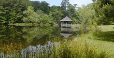Mary Ann Brown Preserve Lake and Pondhouse - primitive campsites available for Scouts 30 miles north of Baton Rouge