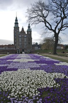 Rosenborg Castle, Denmark, look at these flowers...how magical
