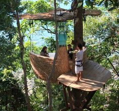 Unique restaurant at the Soneva Kiri resort in Thailand offers unforgettable tree-top dining experience.