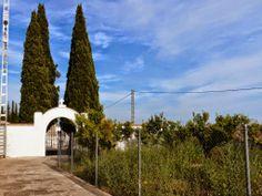 El Informal Segorbino: El Ayuntamiento negocia la compra de una parcela l...