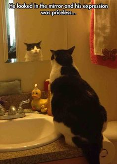 He look in the mirror and his expression is priceless