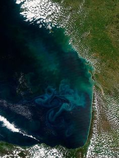 NASA satellite shows massive bloom of phytoplankton off coast of France : TreeHugger
