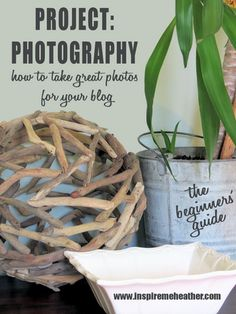 To Take Better Pictures - How to take better photos for your blog - To anybody wanting to take better photographs today