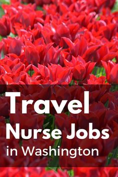 Washington is a diverse and beautiful state! Check out available travel nurse contracts in Washington. Cariant Health Partners | Travel Nurse Jobs
