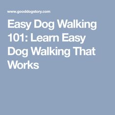 Easy Dog Walking 101: Learn Easy Dog Walking That Works