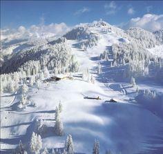 Skigebiet Alpendorf - Ski amadé - Verwöhnhotel Berghof 4-Sterne-Superior Salzburger Land Österreich © Atelier Oczlon www.hotel-berghof.com