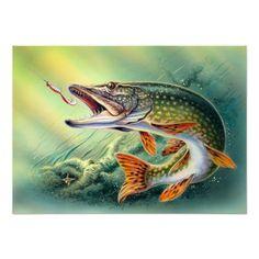 Pike Fishing Print