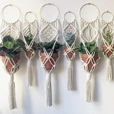 Macrame Plant Hanging collection by Chicago based artist Amy Zwikel Studio.