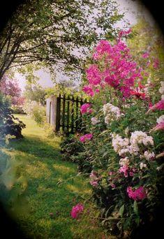 In an English Garden. Beautiful Gardens, Beautiful Flowers, Beautiful Gorgeous, The Secret Garden, Cottage Garden Design, Cottage Gardens, Enchanted Garden, Garden Gates, Dream Garden