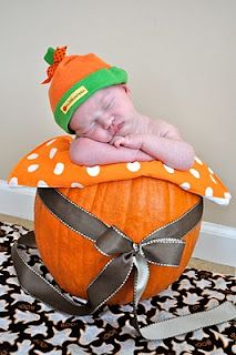 Pumpkin baby photography