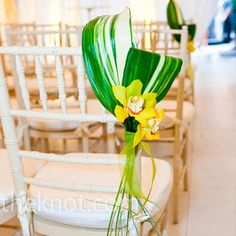 For Brittany, I know this might not show up since it is from the knot, but at least you can click on it. What about this for the aisles?  We could use a cheap pink flower or two in each one.