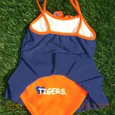 Auburn swim
