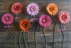 Make Your Own Paper Gerbera Daisies  •  Free tutorial with pictures on how to make a paper flower in under 120 minutes