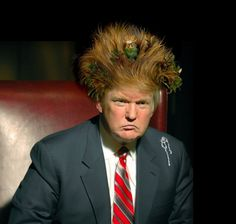 Donald Trump Loathsome Bad Hair Day.