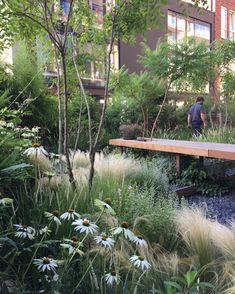Back Gardens, Outdoor Gardens, Garden Architecture, Plant Design, Garden Spaces, Winter Garden, Garden Planning, Garden Projects, Garden Inspiration