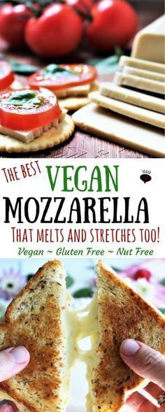 This vegan mozzarella recipe will soon be your favorite vegan cheese! This cheese is made from coconut milk and is free of gluten, soy, and nuts, so everyone can enjoy it. It may seem like a lot of work to make your own cheese, but I promise that it's easy and well worth it! thehiddenveggies.com #vegancheese #coconutcheese #vegancheesenonuts #veganmozzarella #vegangrilledcheese #veganpizzacheese
