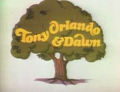 I love The Tony Orlando and Dawn Show. i used to watch it at my grandparents house on the goodlife network. It ran from 1974 to 1976 on CBS it is such a great variety show. I wish we had TV like this today.