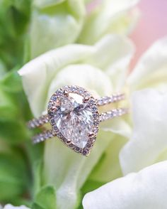 """Pear engagement ring, double band, rose gold - www.acoest1984.com - Lisa Provencal Photography """"Can we all agree, @acoest1984 fiancé did a fantastic job, designing this stunning engagement ring?!…"""""""
