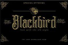 Blackbird  by inksun.mildertype on @creativemarket