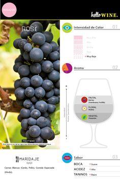 vino rosé rosado chile Vino Y Chocolate, Fun Drinks, Beverages, Alcohol, Liqueurs, Wine Cheese, In Vino Veritas, Pinot Noir, Culinary Arts