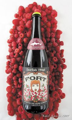 Fort by Dogfish Head Fort Fruit Beer) - Ale brewed with pureed raspberries All Beer, Best Beer, Beer Brewing, Home Brewing, Best Craft Beers, Beer Art, Beers Of The World, Grenade, Beer Brands