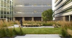 UCSF Cardiovascular Research Building by Andrea Cochran Landscape Architecture , via Behance