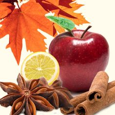Autumn Magic Fragrance Oil-  Autumn comes to life in this magical fragrance oil by Natures Garden.  Autumn magic starts with top notes of lemon and apple; followed by middle notes of anise, cinnamon, and ginger; sitting on well-rounded base notes of woods, musk, and vanilla.  An NG Original Scent!  A Best Seller!