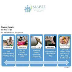 MAPSS Corp