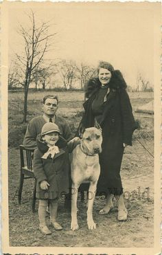 Family posing with big great Dane in vintage photo.