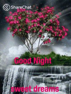 night messages sweet dreams - night messages _ night messages for him _ night messages for him texts _ night messages sweet dreams _ night messages texts _ night messages quotes _ night messages for him love _ night messages friends Good Night Love Quotes, Good Night I Love You, Beautiful Good Night Images, Romantic Good Night, Good Night Prayer, Good Night Blessings, Good Night Gif, Good Night Messages, Good Night Sweet Dreams