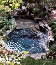 Small Natural Pool Designs Swimming Pools Backyard Landscaping Great Looking Exotic Ideas - dragonswatch. Outdoor Pool, Outdoor Gardens, Small Pool Design, Natural Swimming Pools, Natural Pools, Natural Garden, Small Pools, Plunge Pool, Dream Pools