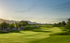 Home of the Phoenix Waste Management Open, TPC Scottsdale is the perfect place to test your skills. And it's only 20 minutes away!
