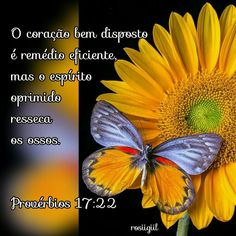 #Provérbios #Sabedoria #Equilíbrio #OCoraçãoAlegreÉRemédio #DeusFiel #rosiigiil