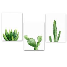 Nature canvas pictures for wall decor, nature wall decoration, nature wall art and ga . Nature canvas pictures for wall decor, nature wall decoration, nature wall art and ga . Cactus Painting, Plant Painting, Plant Art, Succulents Painting, Small Canvas Art, Canvas Wall Art, Canvas Prints, Framed Prints, Cactus Decor