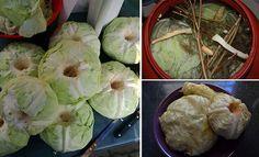 Rețetă de varză murată pentru iarnă, la butoi – iată cum se prepară ușor – Ne aflăm în acea perioada a anului în care gosopodinele se pregătesc