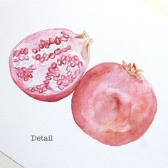Pomegranate Watercolor Print