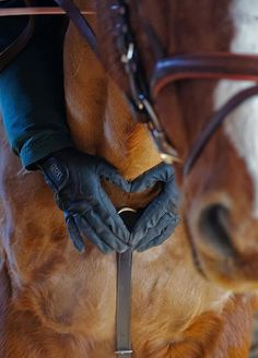 the bond between horse and rider is indescribable❤