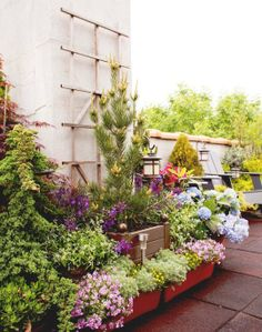 Beautiful, colorful. I like all the different containers making up this beautiful mess