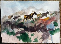 Goats, watercolor on paper